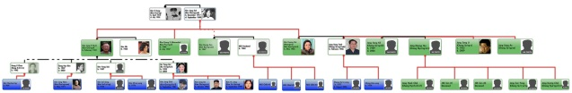 Graphic chart illustrating Jang Song Taek's familial links (Photo: NK Leadership Watch)