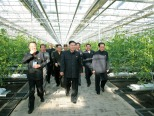 Kim Jong Un (C) tours a greenhouse in the Pyongyang Vegetable Science Institute.  Also seen in attendance is Jang Song Taek (R), Vice Chairman of the National Defense Commission and Director of the Korean Workers' Party Administration Department (Photo: Rodong Sinmun)