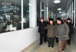 DPRK Premier Choe Yong Rim (2nd R) tours a factory in Pyongyang (Photo: KCNA)