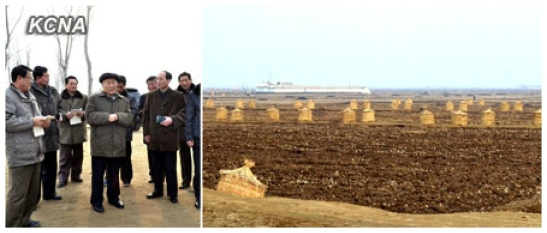 DPRK Premier Choe Yong Rim (image on L, C) visits a cooperative farm in South Hwanghae Province (Photos: KCNA)