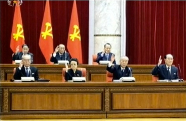 Members of the DPRK central leadership pledge their loyalty at the conclusion of the KWP Central Committee plenary session held in Pyongyang on 31 March 2013.  In the first row (L-R): Kim Ki Nam, Kim Kyong Hui, Choe Yong Rim, Kim Yong Nam. In the second row (L-R): Kang Sok Ju, Yang Hyong Sop and Pak To Chun (Photo: KCTV screengrab)