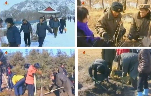 Tree planting activities held in the provinces on 1 March 2013 (Photos: KCTV screengrabs)