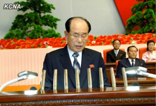 SPA Presidium President and KWP Political Bureau Presidium Member Kim Yong Nam delivers the report at a 14 April 2013 national meeting to commemorate the 101st anniversary of Kim Il Sung's birth (Photo: KCNA)