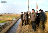 DPRK Cabinet Premier Pak Pong Ju (2nd R) tours an agricultural site in South Hwanghae Province (Photo: KCNA)