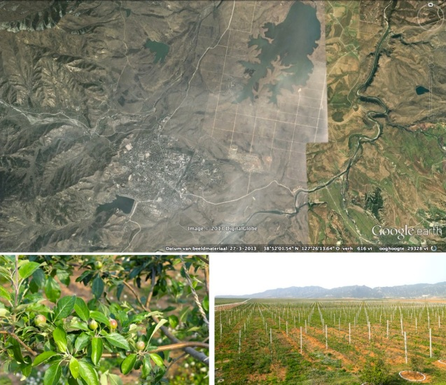 Overview of Kosan Fruit Farm and Kosan County, Kangwo'n Province with images from the Kosan Fruit Farm (Photos: Google image; Rodong Sinmun).
