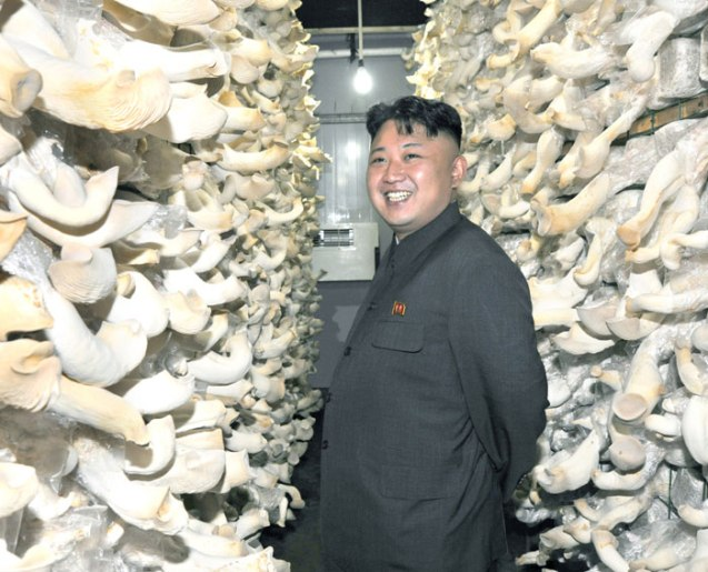 Kim Jong Un tours a mushroom farm constructed by farm #1116, subordinate to KPA Unit #534 (Photo: Rodong Sinmun).