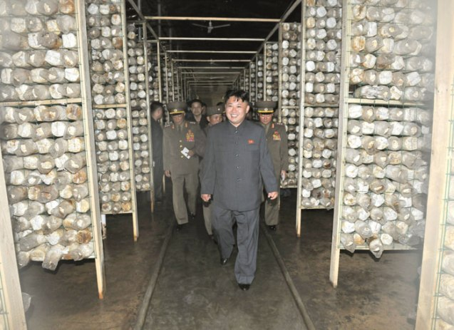 Kim Jong Un tours a mushroom farm constructed by an agricultural unit subordinate to KPA Unit #534 (Photo: Rodong Sinmun).