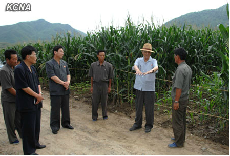 DPRK Cabinet Premier Pak Pong Ju (2nd R) talks with cooperative farm managers during a visit to a cooperative farm in South P'yo'ngan Province (Photo: KCNA).