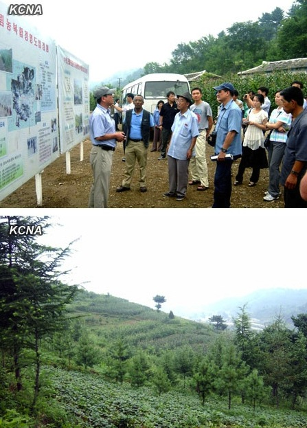 Participants in the agroforestry workshop visit an agroforestry management pilot program in Suan County, North Hwanghae Province (Photos: KCNA).