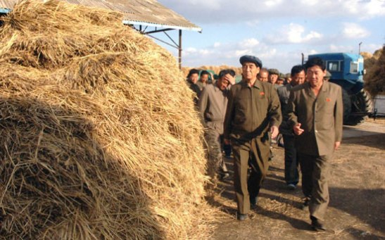 DPRK Premier Pak Pong Ju (L) tours the Yoldusamch'o'n Farm in Sukch'o'n County, South P'yo'ngan Province (Photo: Rodong Sinmun).