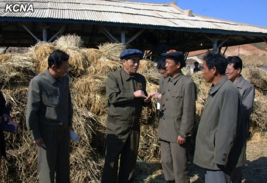 DPRK Premier Pak Pong Ju (2nd L) visits the Jangsong Cooperative Farm in Ongjin County, South Hwanghae Province (Photo: KCNA).
