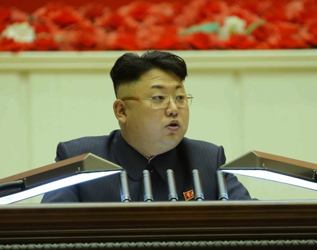 Kim Jong Un speaks at the 8th Conference of Ideological Officials of the KWP in Pyongyang on 25 February 2014 (Photo: Rodong Sinmun).