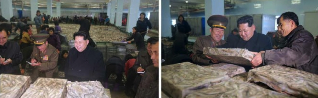 Kim Jong Un tours the August 25 Fishery Station (Photo: Rodong Sinmun).