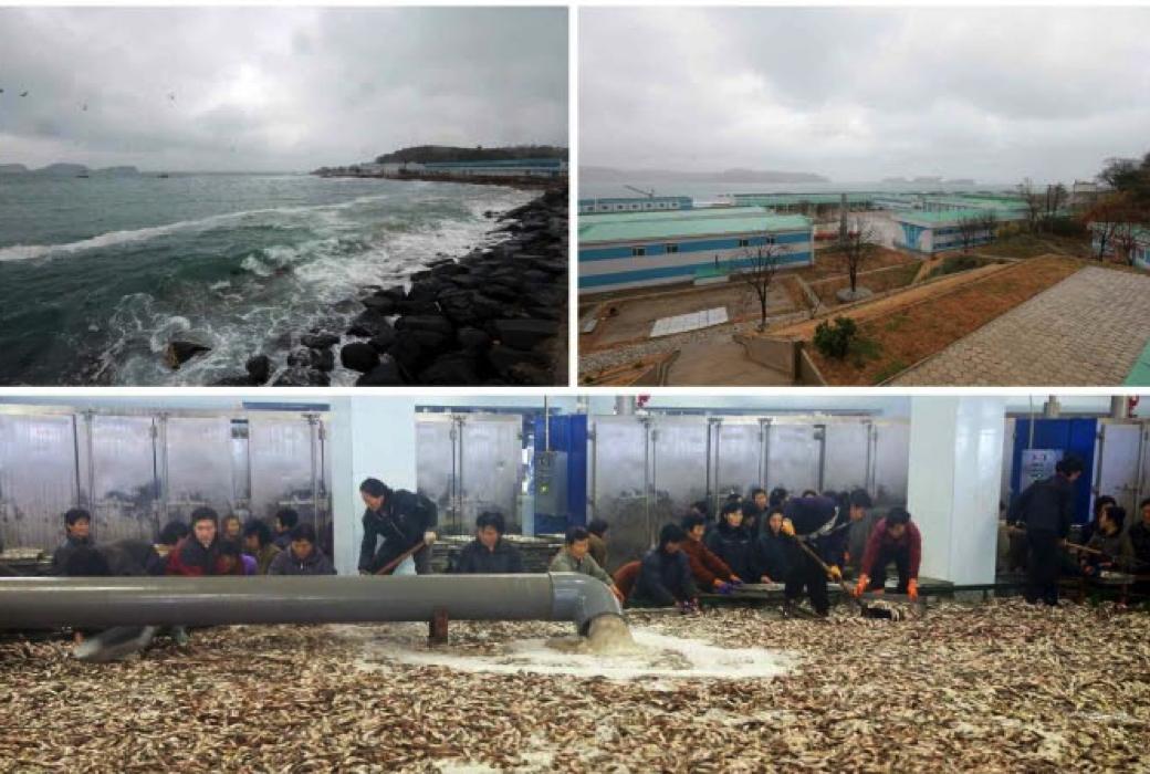 Kim Jong Un tours the August 25 Fishery Station subordinate to KPA Unit #313 (Photo: Rodong Sinmun).