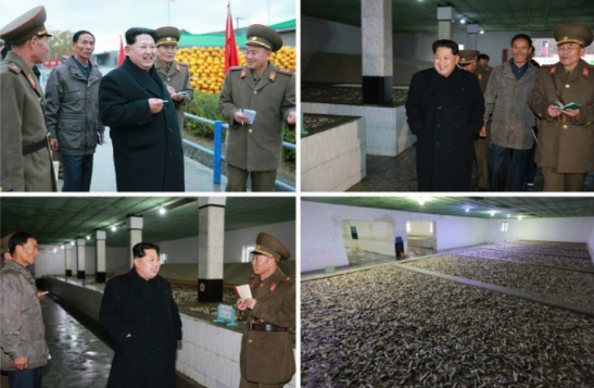 Kim Jong Un tours Fishery Station #15 (Photo: Rodong  Sinmun).