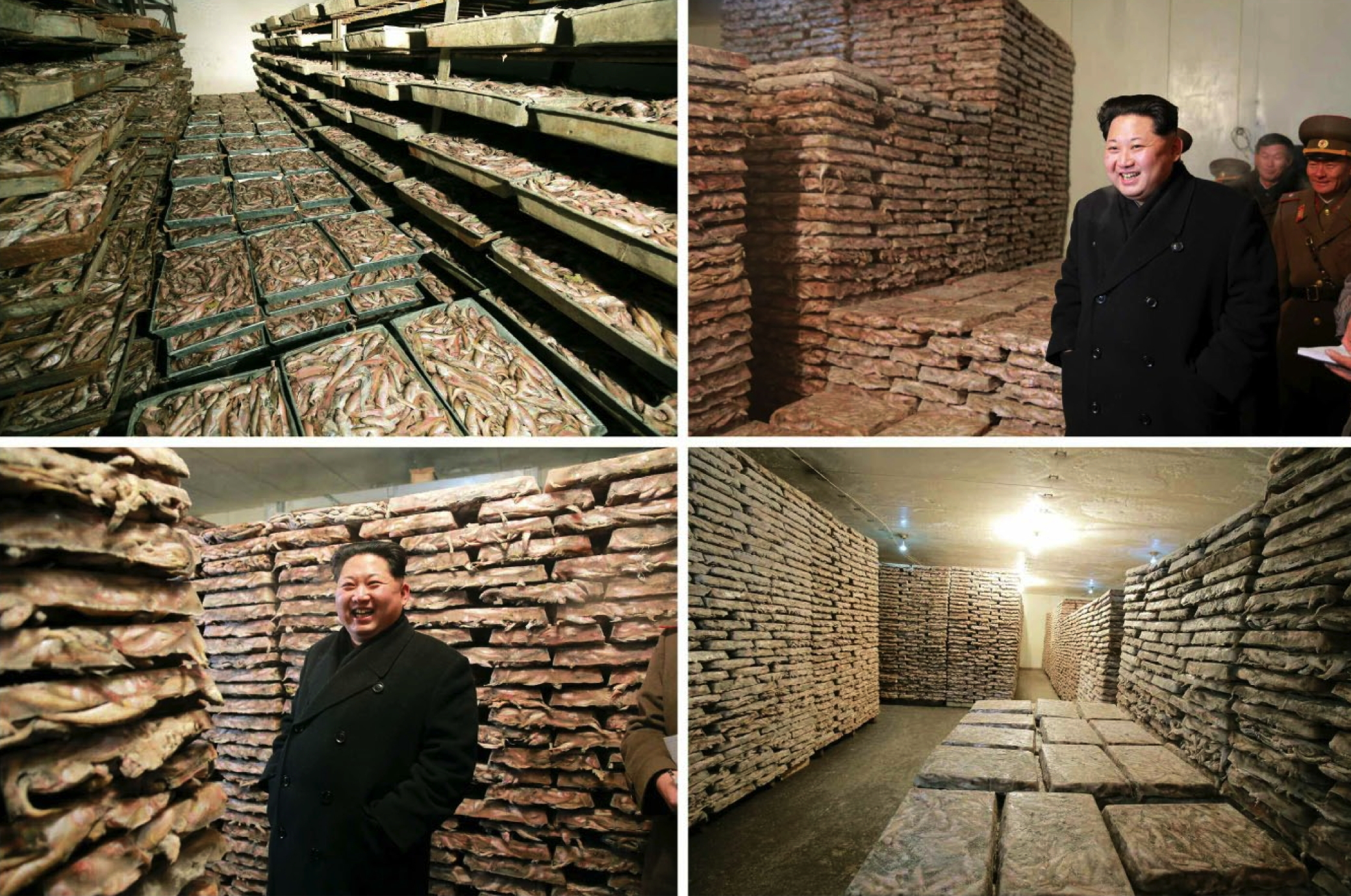 Kim Jong Un inspects products of Fishery Station #15 (Photo: Rodong Sinmun).