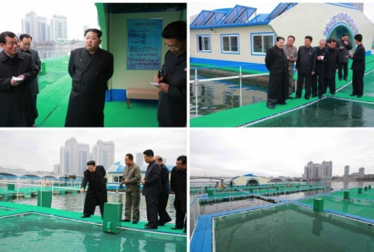 Kim Jong Un visits a fishery on the Taedong River (Photo: Rodong Sinmun).