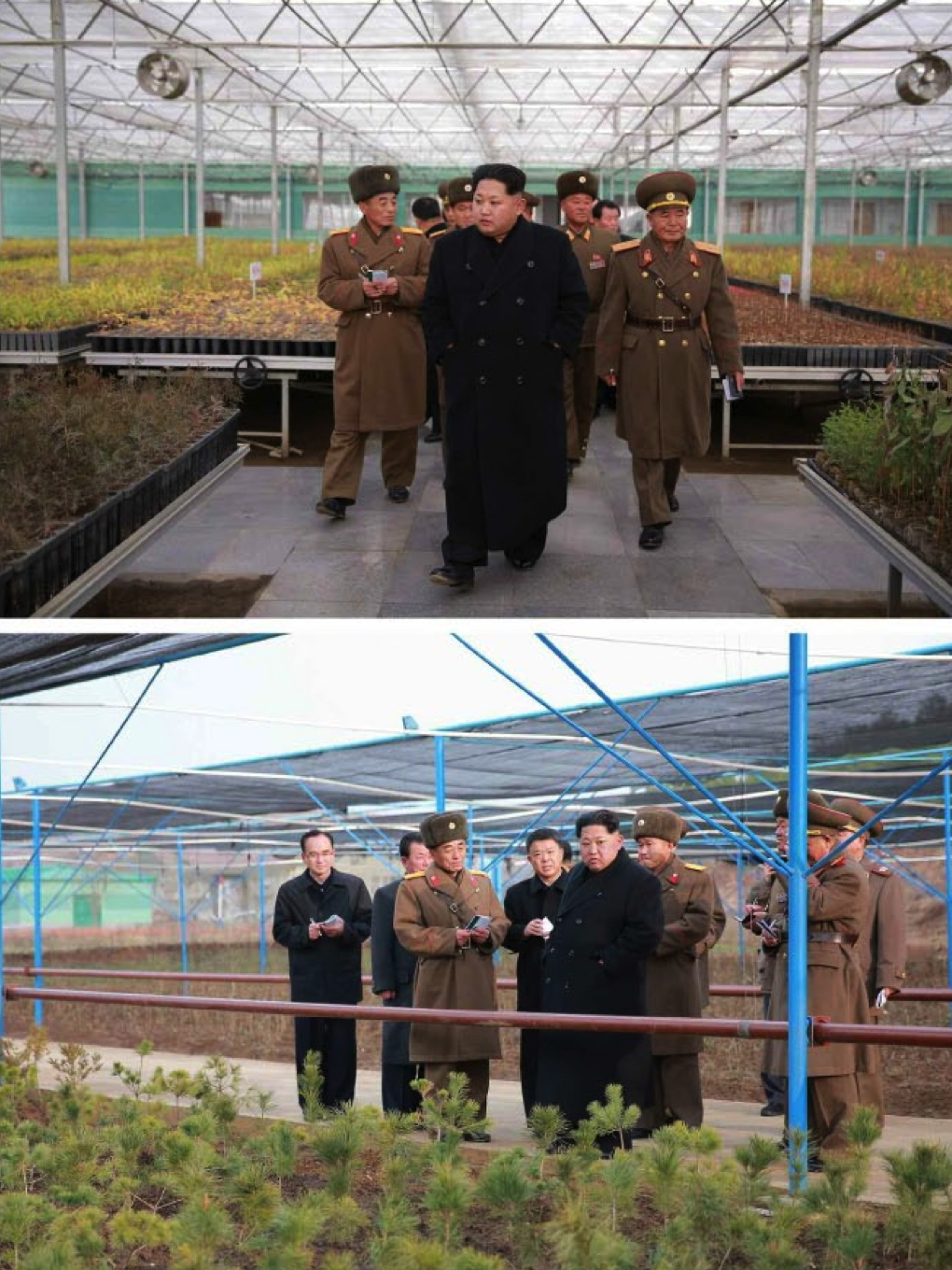 Kim Jong Un tours the KPA Tree Nursery #122 (Photos: KCNA).