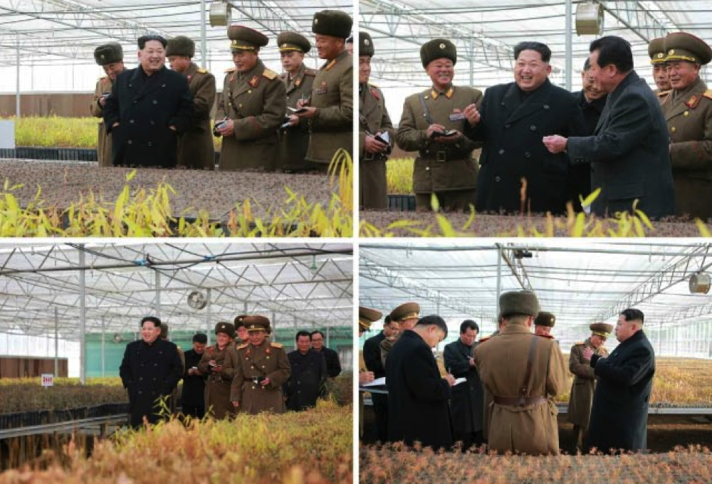 Kim Jong Un tours greenhouses of the KPA Tree Nursery #122 (Photos: KCNA).
