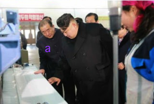 Kim Jong Un is briefed about a textile machine during a visit to Kim Cho'ng-suk Textile Mill.  Also in attendance is WPK Light Industry Department Director An Jong Su (a) (Photo: Rodong Sinmun).