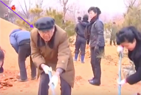 WPK Secretary and SPA Chairman Choe T'ae Bok plants a tree at the Central Tree Nursery in Pyongyang on March 2, 2016 (Photo: KCTV screen grab).