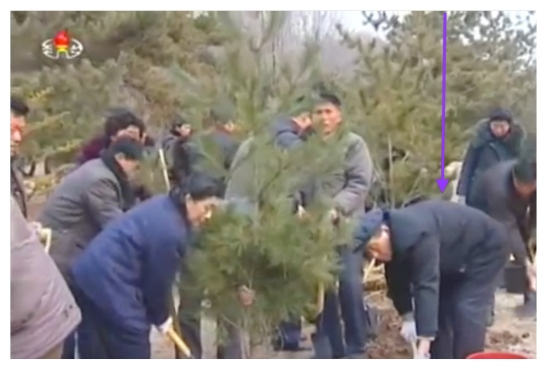 WPK Secretary and Director of Planning and Finance Kwak Pom Gi participates in planting a tree at Mangyo'ngdae Revolutionary Museum in Pyongyang on March 2, 2016 (Photo: KCTV screen grab).