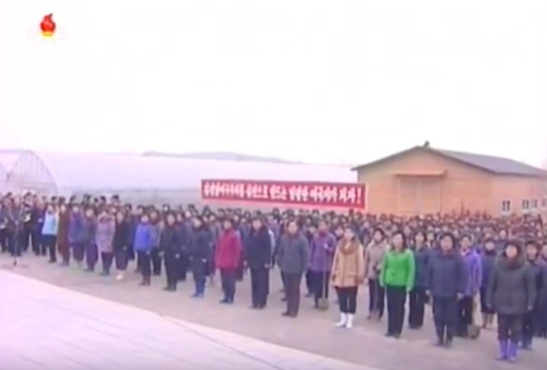Members of the Korean Democratic Women's Union attend a meeting on Tree Planting Day at the Central Tree Nursery in Pyongyang on March 2, 2016 (Photo: KCTV screen grab).
