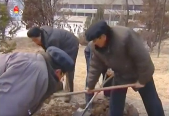 Faculty and students plant trees and shrubberies on the campus of Kim Il Sung University in Pyongyang on March 2, 2016 (Photo: KCTV screen grab).