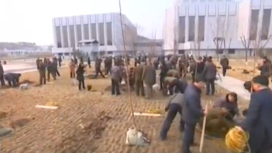 Members of the Kim Il Sung Youth League plant trees and shrubberies at the Mangyo'ngdae Schoolchildren's Palace in Pyongyang on March 2, 2016 as part of National Tree Planting Day (Photo: KCTV screen grab).