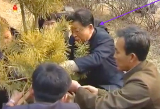 State Planning Commission Chairman and DPRK Vice Premier Ro Tu Chol ties stakes to a tree at Moran Hill in Pyongyang on March 2, 2016 (Photo: KCTV screen grab).