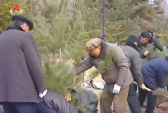 SPA Presidium Vice President Yang Hyong Sop helps stabilize a tree being planted on the premises of the Mangyo'ngdae Revolutionary Museum in Pyongyang on March 2, 2016 (Photo: KCTV screen grab).