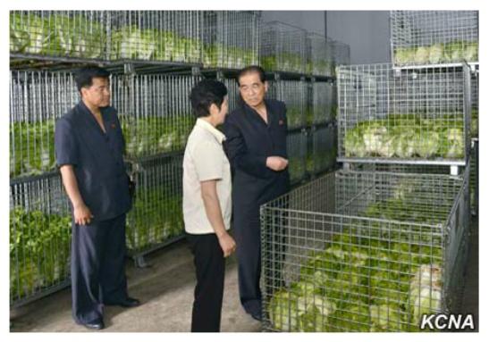 DPRK Premier Pak Pong Ju visits the Ryugyo'ng Pickle Factory in suburban Pyongyang (Photo: KCNA).