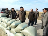 DPRK Premier Pak Pong Ju inspects a farm in Such'o'n County, South P'yo'ngan Province (Photo: Rodong Sinmun).