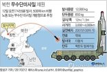 Graphic showing the path of a DPRK ballistic missile launched on the morning of February 12, 2017 from Panghyo'n Airbase in Kuso'ng, North P'yo'ngan Province (Photo: Yonhap).